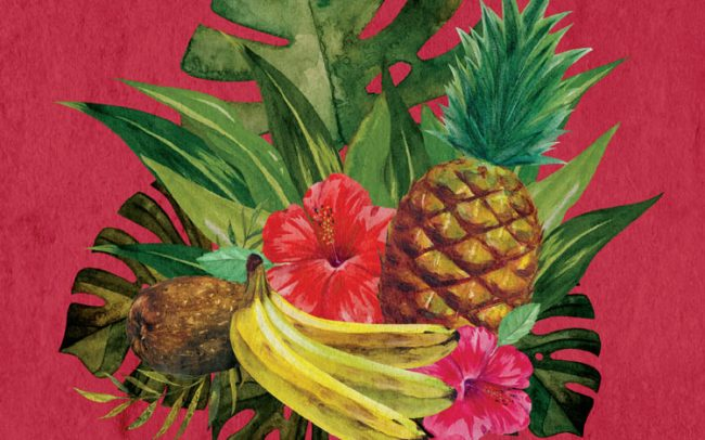 artwork watercolor atomic geisha fruit