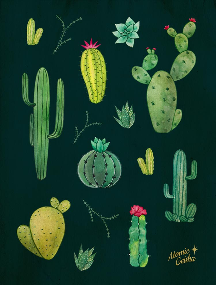 cacti illustration tropical